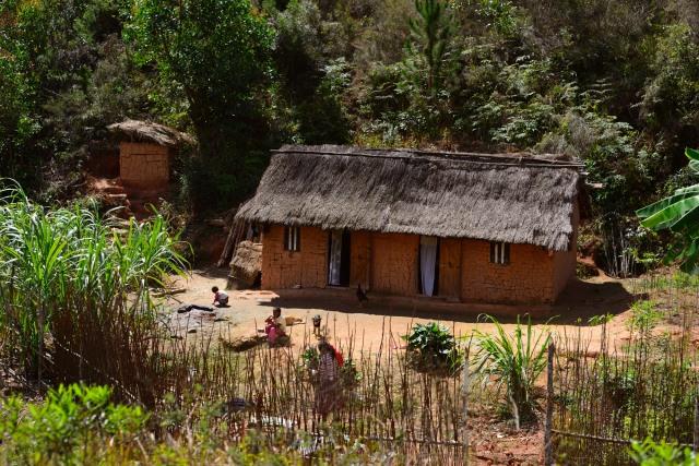 Mud houses