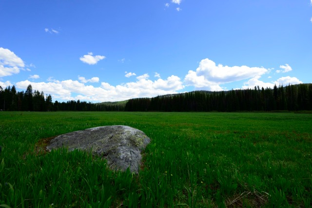 In the middle of the meadow, a massive rock.