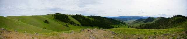 The National Bison Range. Those small brown dots on the hill on the far left? Yes, those are bison.